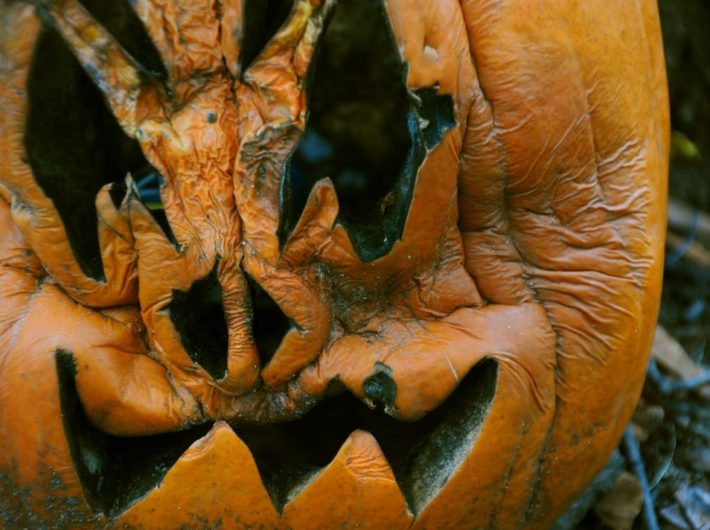 Five Ways to Use Your Old Jack O' Lantern
