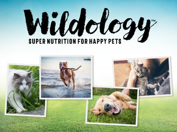 Introducing Wildology: A Super Pet Food